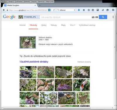 Obrazek 4 - Google-obrazek-mimo-web.png